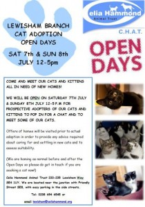CHAT open days for cat adoptions Lewisham branch